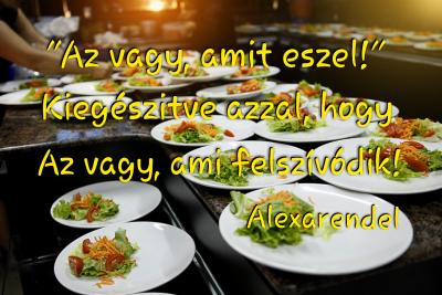 Alexarendel/ Az vagy, ami felszívódik!