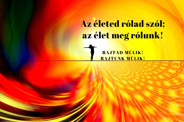 alexarendel.hu-rajtad-múlik