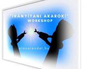 _Irányítani akarok!_ workshop_alexarendel