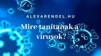 Mire tanítanak a vírusok_alexarendel