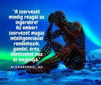 A szervezet mindig reagál az ingerekre. Az emberi szervezet magas intelligenciával rendelkezik; gondol, érez, döntéseket hoz és megoldja.