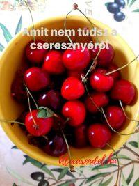 Amit nem tudsz a cseresznyéről/ alexarendel.hu