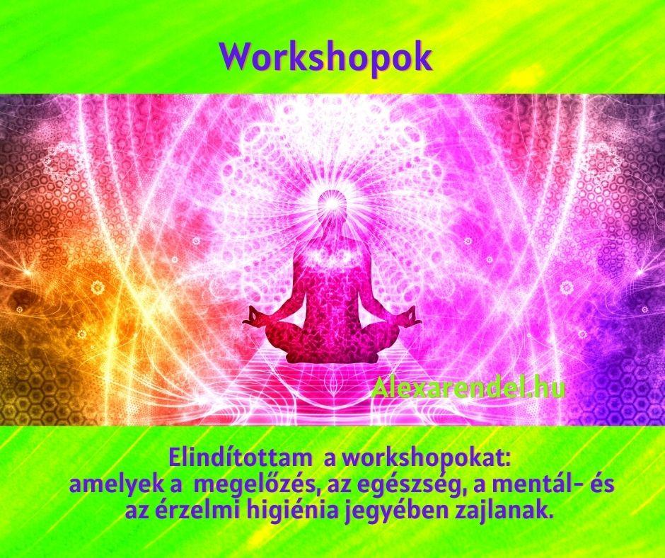 Workshopok_alexarendel